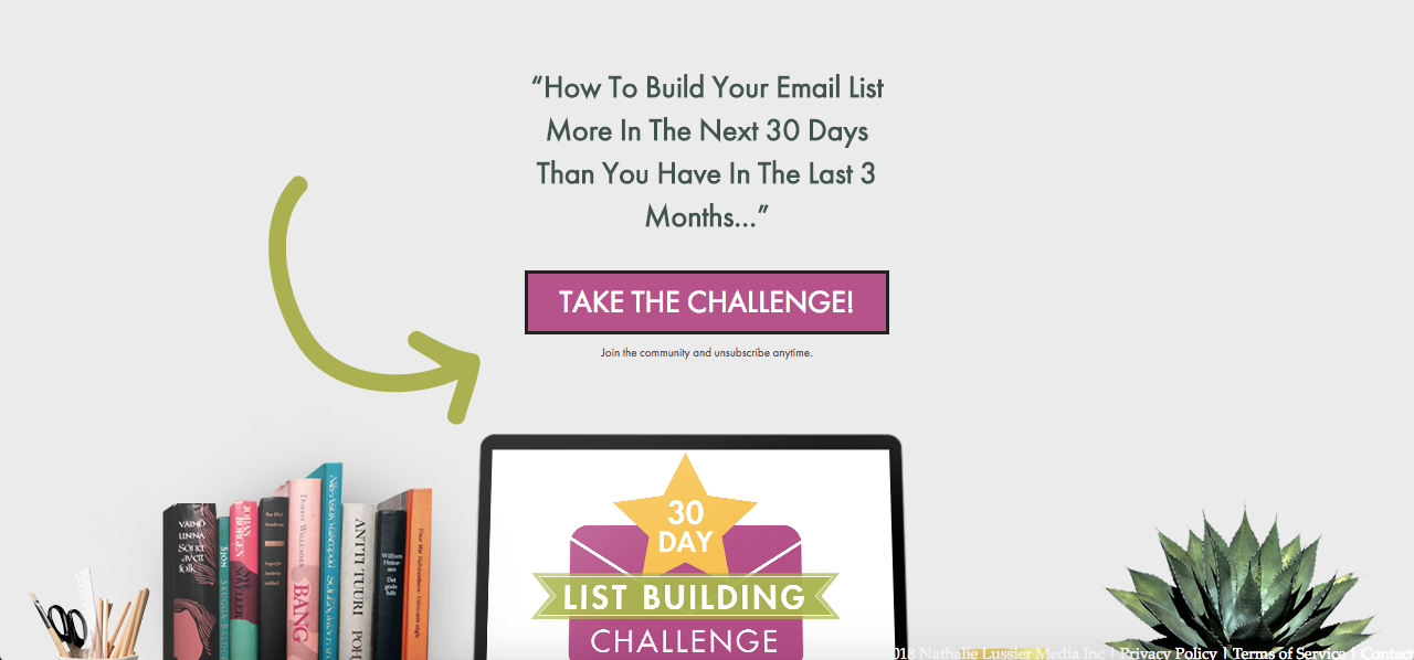 Lead Harvesting Email Challenge